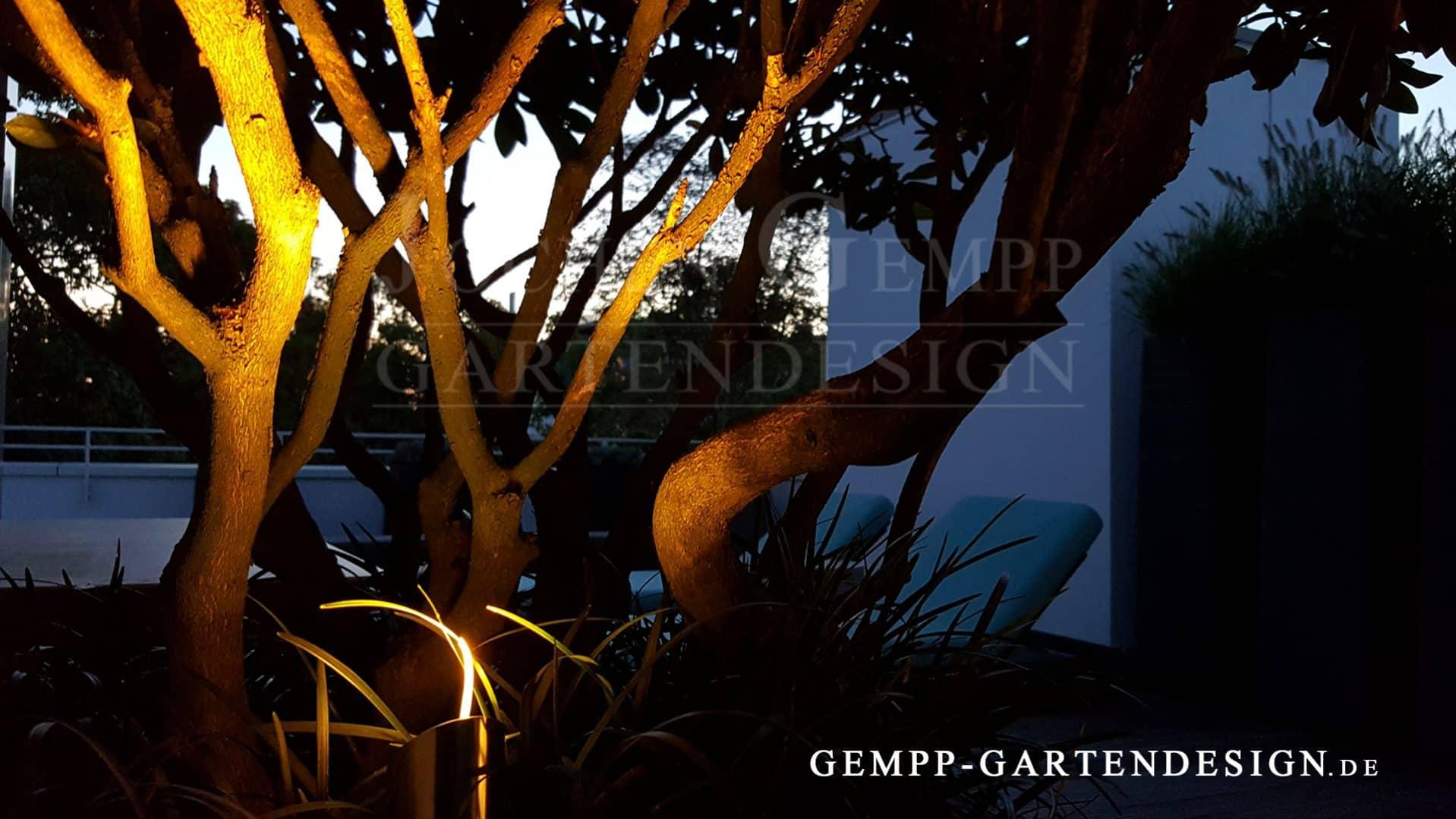 Lichtplanung Garten gartenbeleuchtung außenleuchten gempp gartendesign