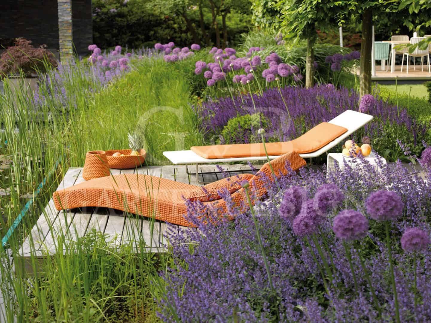 pflanzen formgeh lze gempp gartendesign. Black Bedroom Furniture Sets. Home Design Ideas