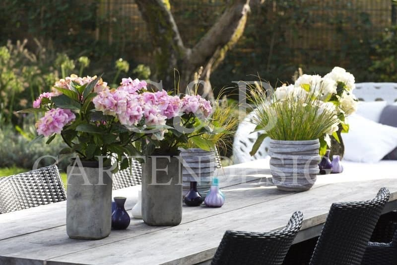 moderner stimmungsvoller privatgarten hamburg gempp gartendesign. Black Bedroom Furniture Sets. Home Design Ideas