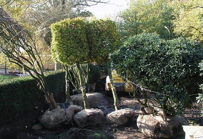 Hochsaison im Gartenbau / Unsere Gartengesigner in Aktion