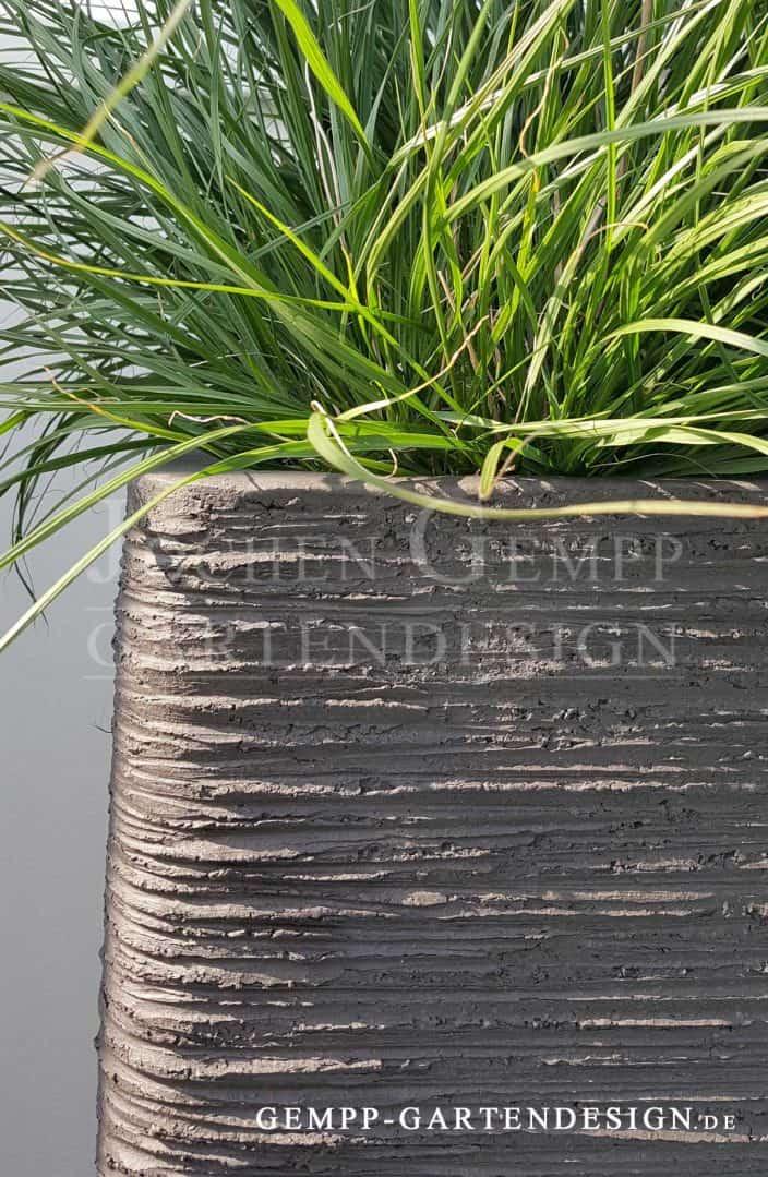 Pflanzgefäße als gestalterische Highlights | Gempp Gartendesign