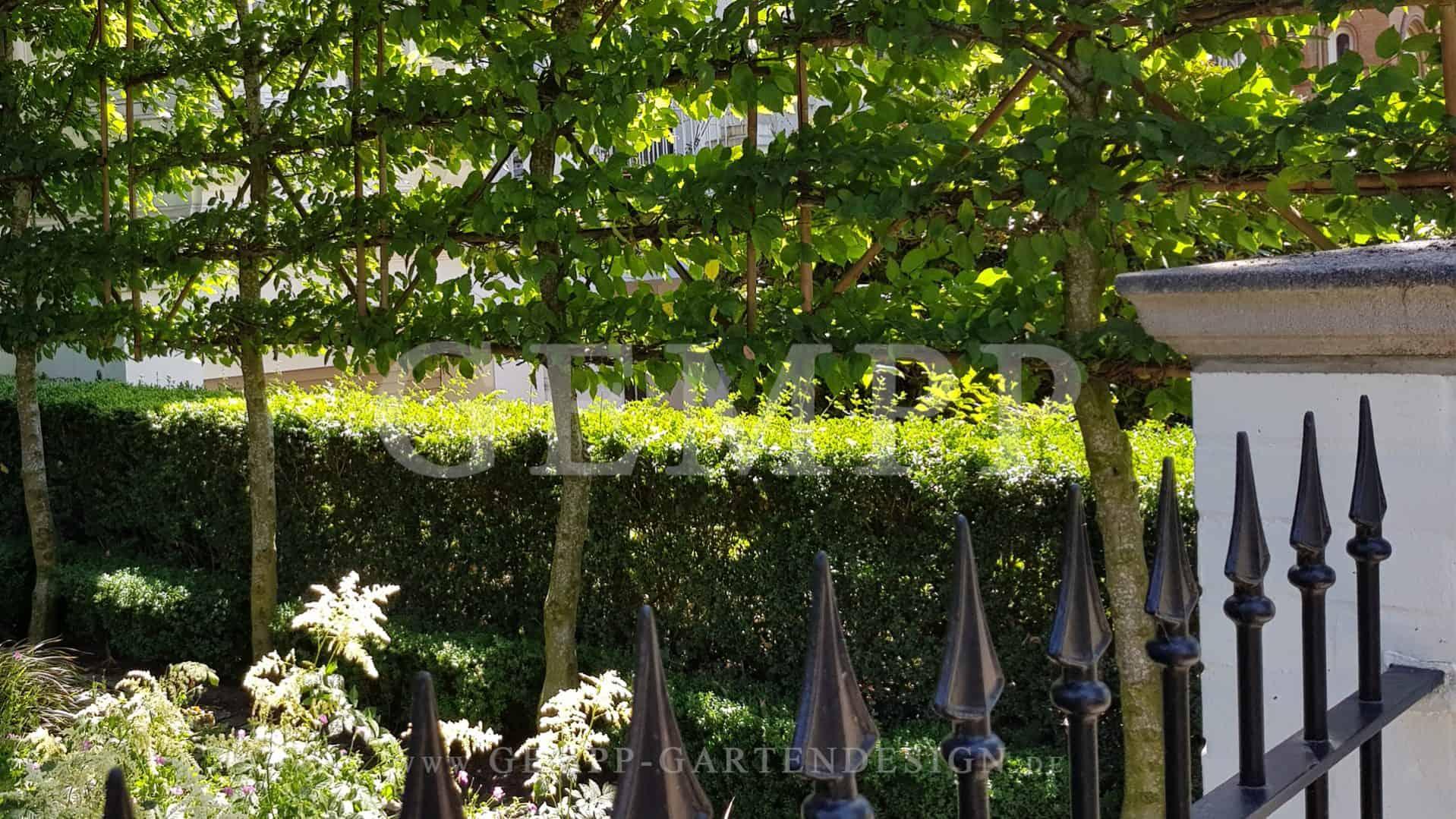 Moderne Vorgartengestaltung kleiner Garten Sichtschutz