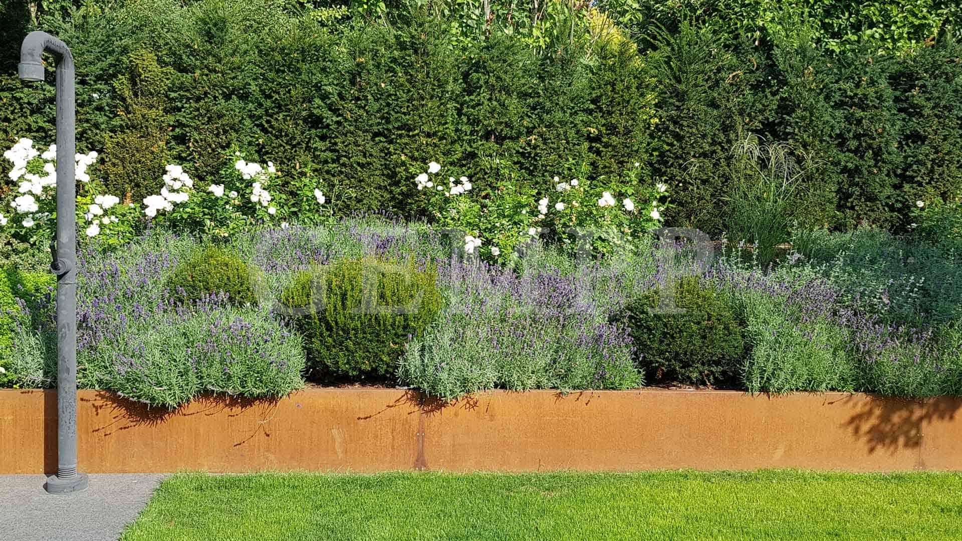 Modernes Gartendesign Foto Bild