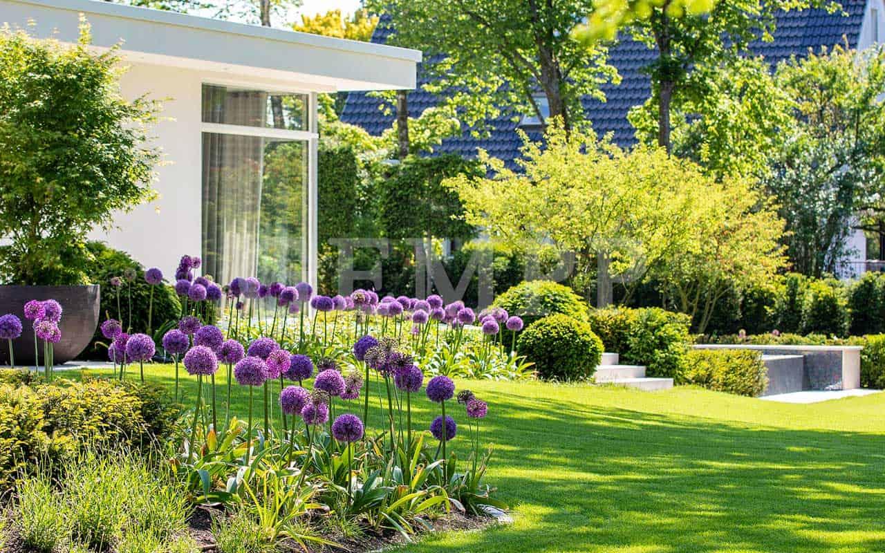 Moderne Gartengestaltung Idee Bild Foto Garten